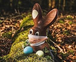 Das Trainerteam wünscht Frohe Ostern!
